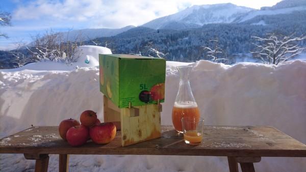 Samerberger Bio Apfelsaft im 5 Liter Karton